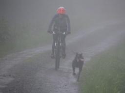 Trénujeme za každého počasí :-(
